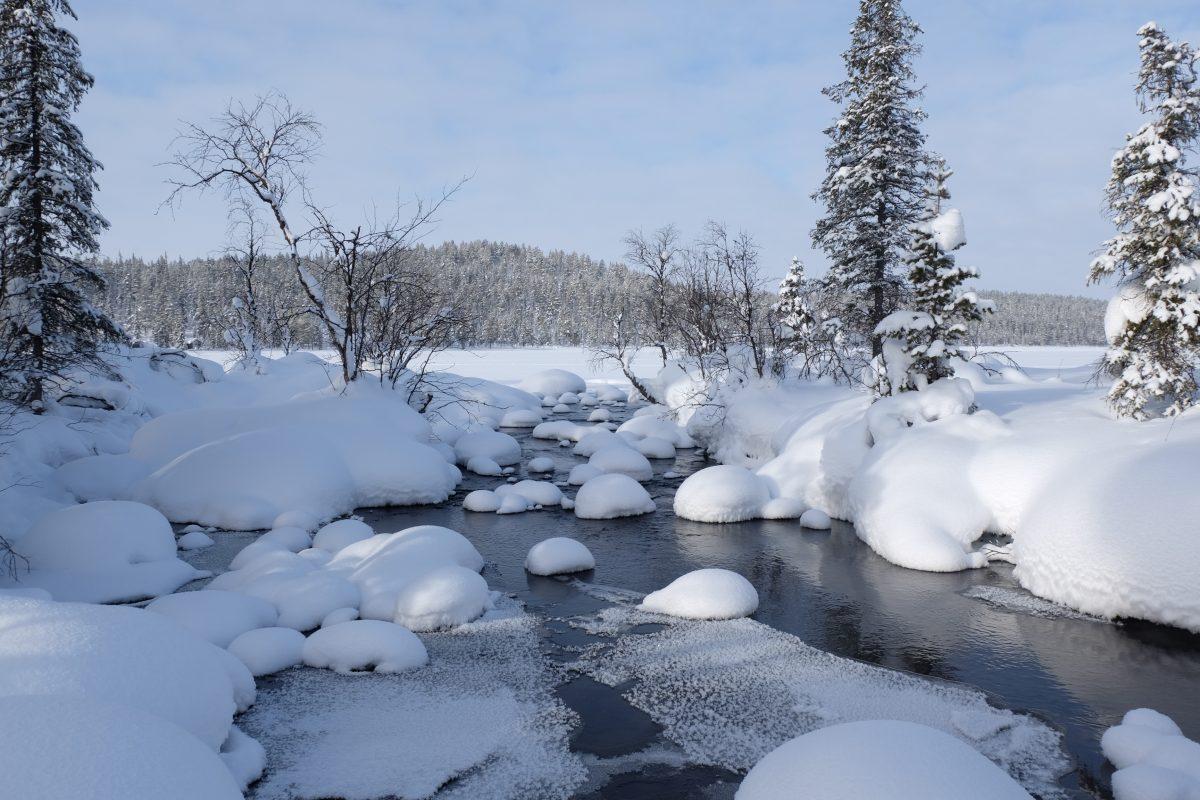 Skysled natur till Icehotel